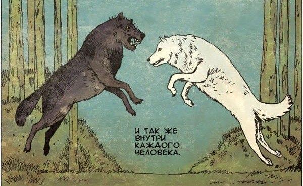 волки1
