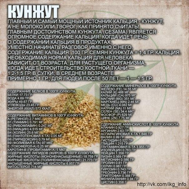 кунжут