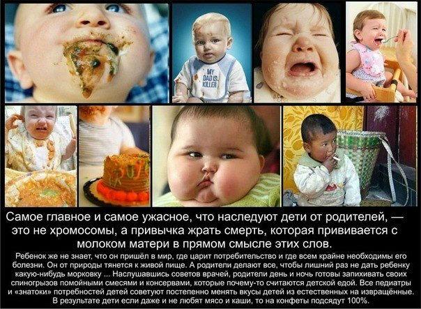 кормить детей