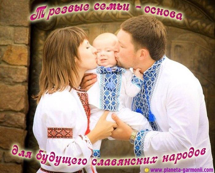 трезвые семьи